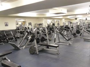 Free Weights Gym Equipment