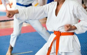 Martial Arts classes, karate, tai chi