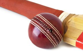 Cricket bat and ball, indoor cricket nets