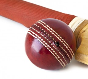 Cricket bat and ball, indoor cricket nets